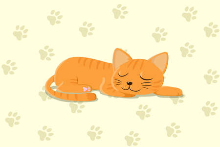 An image of cute sleeping cat wallpaper