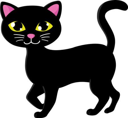 An image of a cute black cat