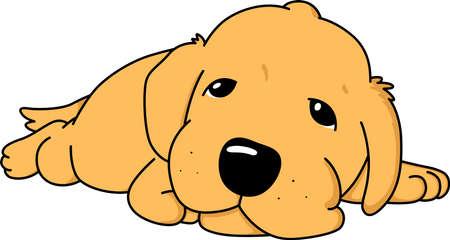 An image of sleepy puppy