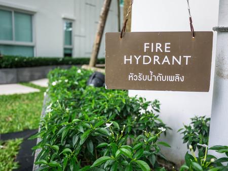 borne fontaine: bouche d'incendie dans le jardin
