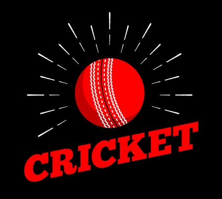 Vector cricket sport ball icon sun burtst print hand drawn vintage line art design