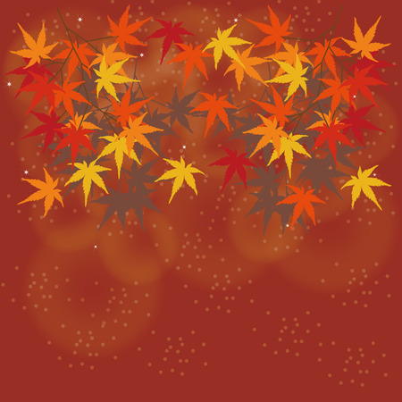 momiji: Illustrations the image of autumn leaves of maple