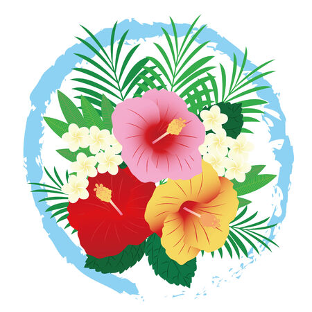 tropical flower: Image of a tropical flower