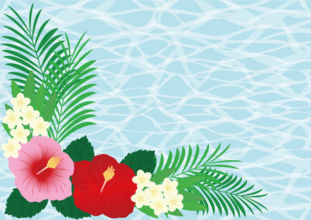seawater: Sea flowers and tropical