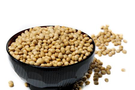 soya bean: Soya bean isolated on a white background