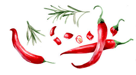 watercolor drawing of chili peppers on white background