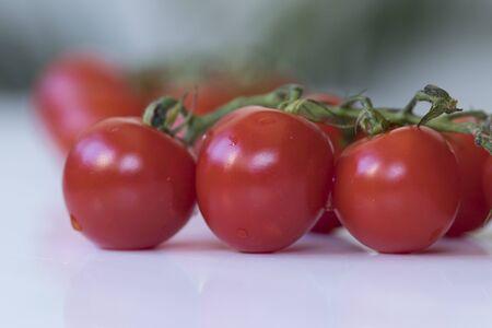 Regular angle shot of organic tomatoes. Shinny, tiny red organic cute tomatoes. Close-up macro photography.