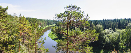Russian nature. River viewed from a top of the hill with tall pine trees Archivio Fotografico