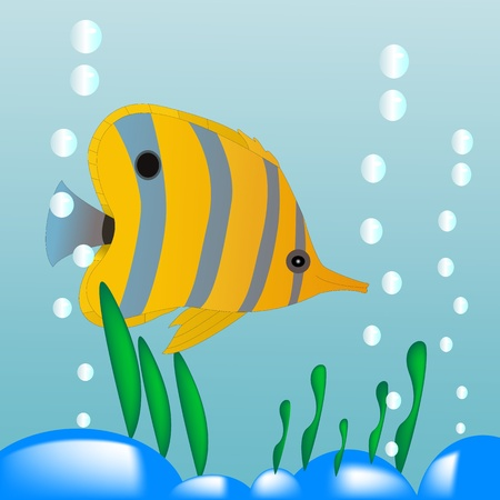 colorfull little aqua yellow fish Stock Vector - 11637654