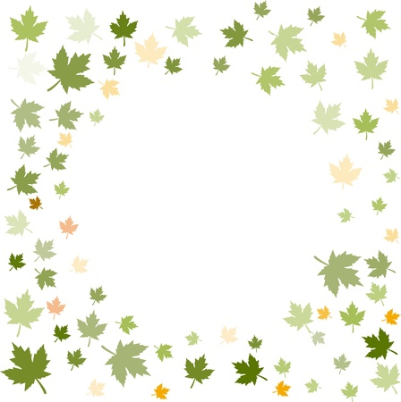 maple Leaves Stock Vector - 11814167