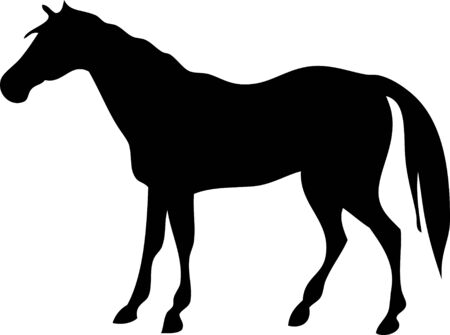 vector silhouette of a horse on a white background Illustration