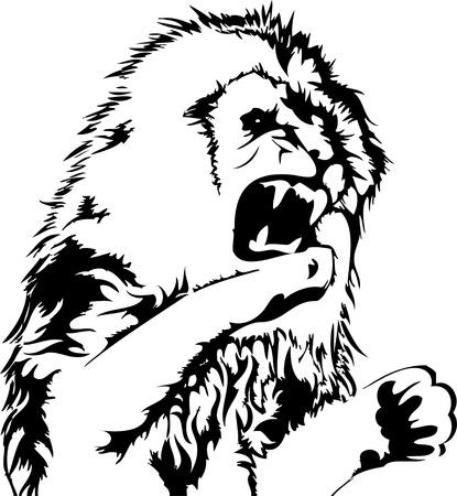 wild lion Stock Vector - 12483665
