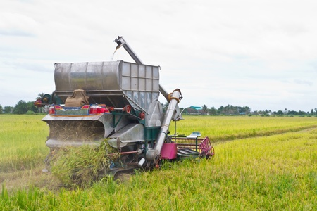 combine harvester on a rice field Stock Photo - 14853247