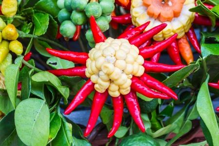Fresh vegetables arranged as flowers Stock Photo - 22722617