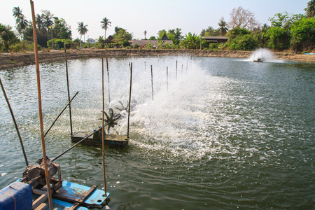 Aerator in the shrimp farm for fresh water  photo