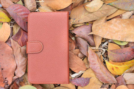 Smartphone leather case cover on dried leafs