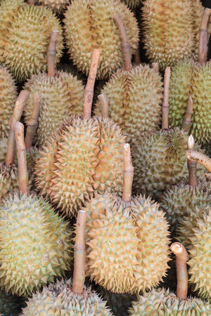 Durians in the market, famous fruit in Thailand  photo