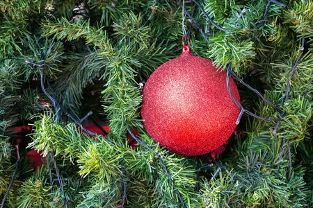 red ball: Red ball on christmas tree