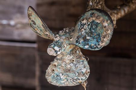 腐食のボートのプロペラのフジツボ 写真素材