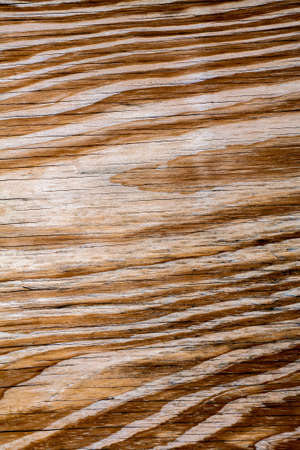 wood texture background: Wood wall texture background