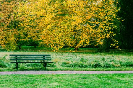 banc de parc: Autumn Park Bench
