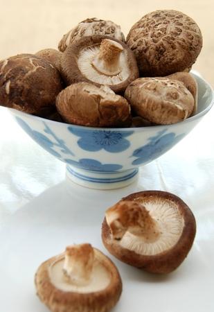 sapid: Shiitake mushroom Stock Photo