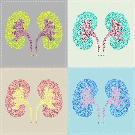 Illustration of a pattern of Kidney in various colors