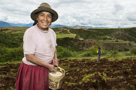 Maras, Peru - December 23, 2013: Peruvian woman sowing a field near Maras, in Peru 新聞圖片