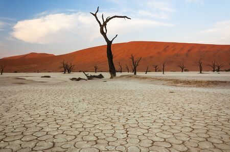 sossusvlei: Dead trees and red dunes in Sossusvlei, Namibia Stock Photo