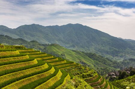 View of the Longsheng Rice Terraces (Dragons Backbone Rice Terraces) in Guangxi, China.