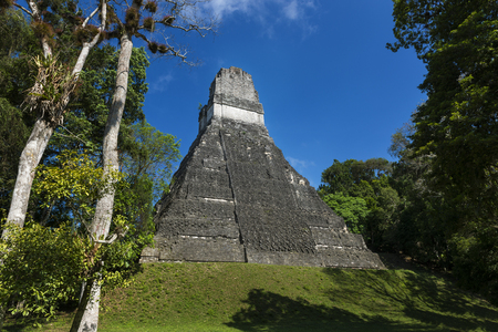 Pyramid in the ancient Maya City of Tikal in Guatemala, Central America