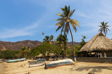 marta: Boats and Palm Trees in beach by the village of Taganga in the Caribbean Coast of Colombia, South America