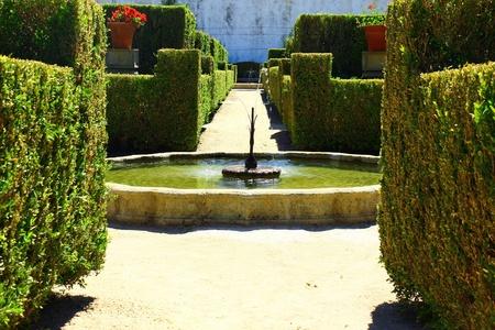 Garden, Castelo Branco, Portugal photo