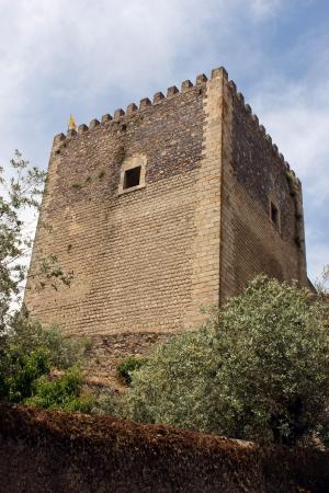 Castle, Castelo de Vide, Portugal photo