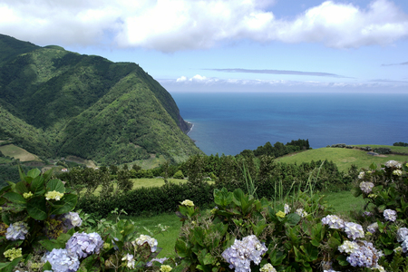 Sao Miguel island, Azores, Portugal Stock Photo
