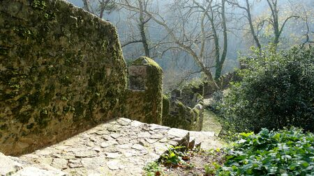 Detail of a forest trail, Sintra, Portugal Stock Photo