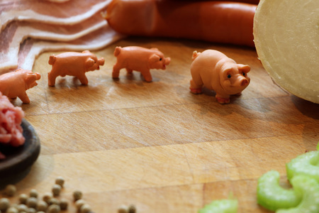 midget: Miniature pigs surrounded by pork meat