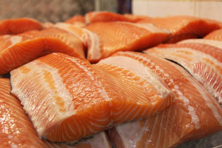 salmon fishery: Salmon Stock Photo