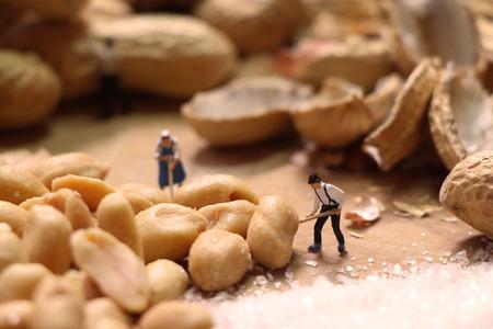 mini farm: Miniature farmers preparing nuts