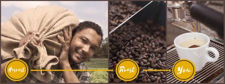 Brazilian Coffee Process