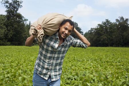 Farmer at carrying plantation harvest