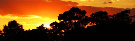 Afrikanische Landschaft während des Sonnenuntergangs - panoramisch Standard-Bild - 83061348