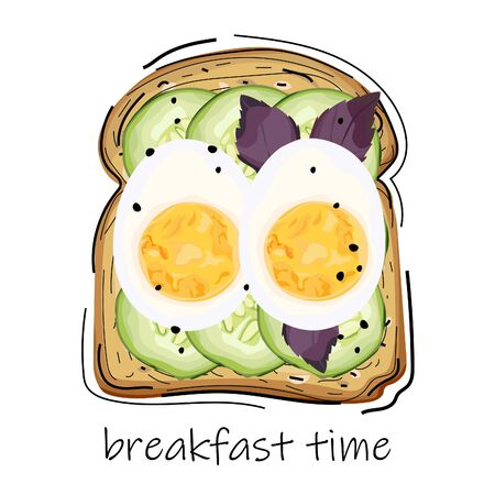 Bread with egg, cucumber, seeds and basil. Tasty sandwich. Breakfast time. Vector illustration.