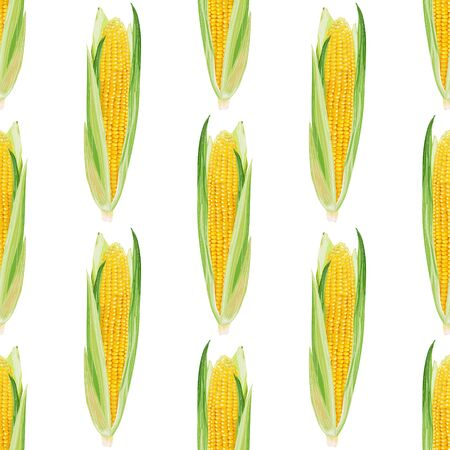 Seamless pattern with corn on a white background. Sweet yellow corn. Wallpaper, print, packaging, paper, textile design, promotional material. Vector illustration.