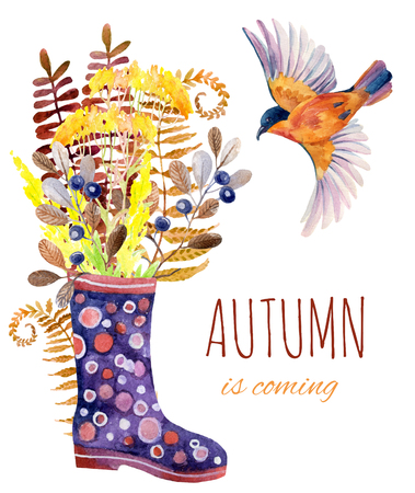 gumboots: Watercolor polka dot rubber boots with meadow herbs and bird. Hand painted autumn illustration with gumboots, blackthorn branches, fern and field flowers Stock Photo