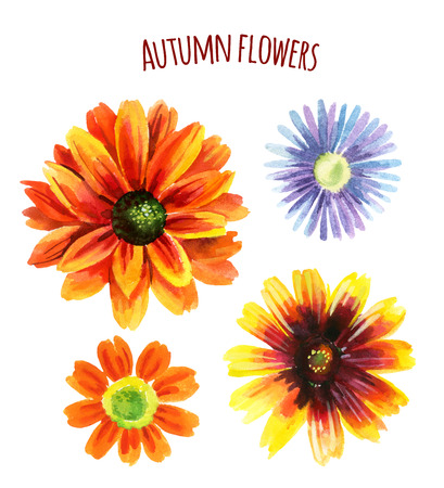Watercolor autumn flower set. Hand painted illustration