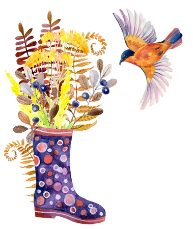 Watercolor polka dot rubber boots with meadow herbs and bird. Hand painted autumn illustration with gumboots, blackthorn branches, fern and field floweers Stock Photo