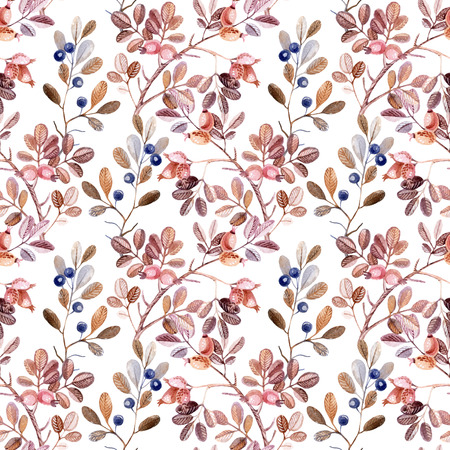 dog rose: Watercolor seamless pattern with Dog Rose and blackthorn branches. Autumn background Stock Photo