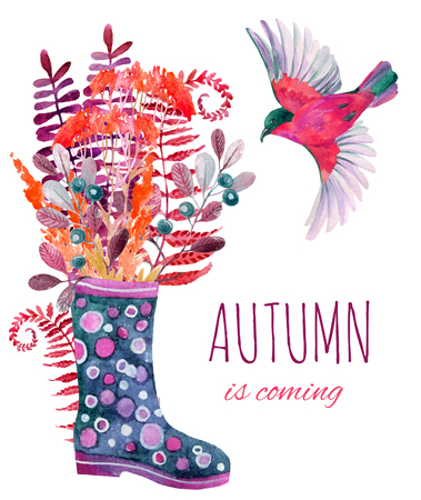 gumboots: Watercolor polka dot rubber boots with meadow herbs and bird. Hand painted autumn illustration with gumboots, blackthorn branches, fern and field floweers Stock Photo