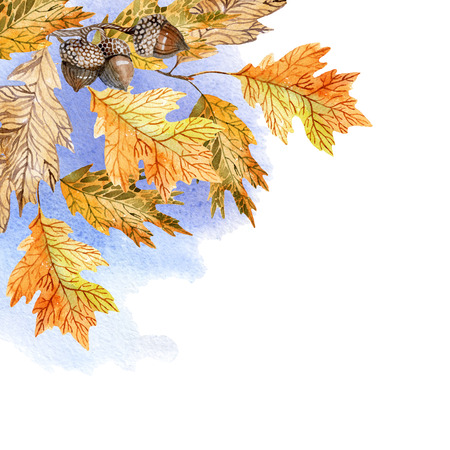 Watercolor illustration with oak leaves on blue sky background